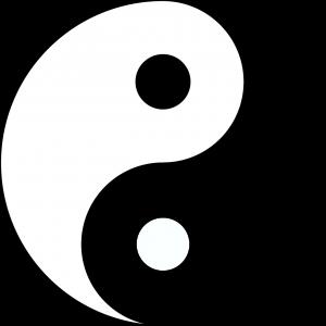 Trascendiendo la dualidad